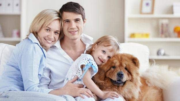 Wills & Trusts dog-young-family Direct Wills Tintagel